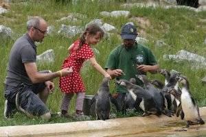 Kindergeburtstag im Tierpark Sababurg (c) Tierpark Sababurg