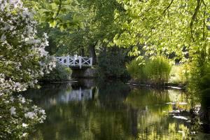 Brücke im Schlosspark Lütetsburg (c) Gräflich Knyphausenschen Rentamt