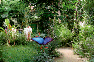 (c) alaris Schmetterlingspark in Uslar