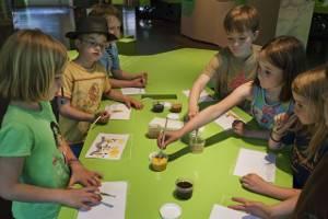 Kindergeburtstag im Museum Schwedenspeicher in Stade © Museum und Park Kalkriese 2012