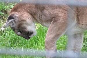 Zoo Hoyerswerda (c) Adriana