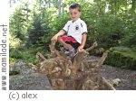 Überherrn Ökologischer Waldlehrpfad