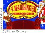 4. Waiblinger Weihnachtscircus