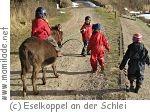 Kindergeburtstag auf der Eselkoppel an der Schlei