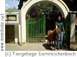 Tiergehege Falkenhain-Dornreichenbach