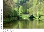 Waldseebad Hasselfelde