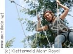 Kletterwald Mont Royal in Traben-Trabach