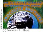 Crocodile-Brothers Reptilienausstellung in Kelkheim