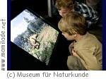 Museum für Naturkunde Berlin - Kinderveranstaltungen