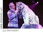 Circus Sarrasani in Potsdam