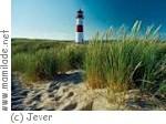 Jever - Landschaft