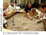 Kindergeburtstag im Museum für Naturkunde