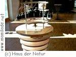 Kindergeburtstag im Haus der Natur Bad Harzburg