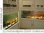 Nationalparkzentrum Cuxhaven