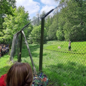 Mami-Check: Wildparadies Tripsdrill