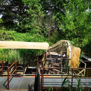 Mami-Check: Serengeti-Park in Hodenhagen