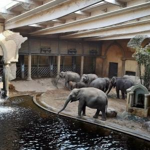 Mami-Check: Tierpark Hagenbeck