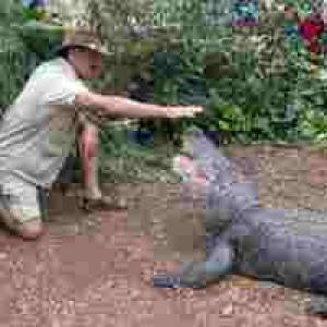 (c) Alligatorfarm Ockstadt