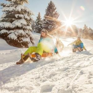 Alpsee-Bergwelt Skizirkus