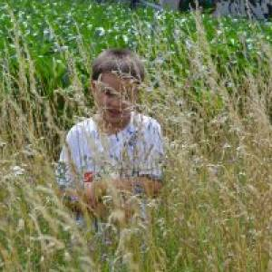 Kind im hohen Gras - Naturerlebnispfad Bad Buchnau (c) alex grom