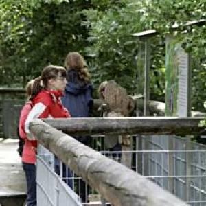 Baumkronenpfad (c) Nationalpark Hainich
