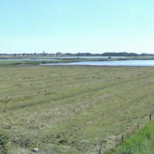 NABU-Vogelreservat Wallnau