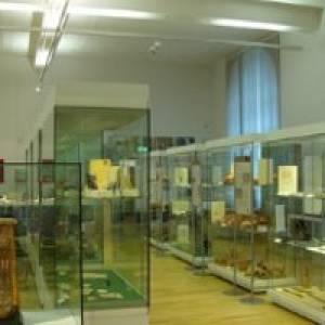 Ägyptisches Museum der Universität Bonn