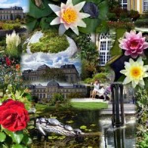 Der botanische Garten am Poppelsdorfer Schloss in Bonn (c) Botanische Gaerten Bonn