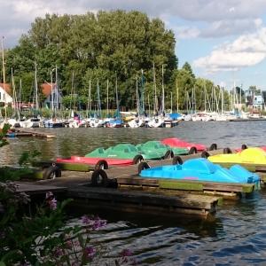 Rudern oder Tretbootfahren in Paderborn