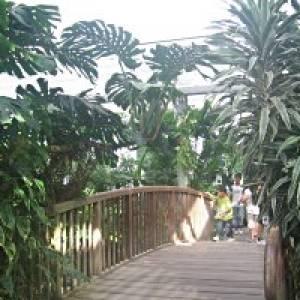 Botanischen Garten Duisburg