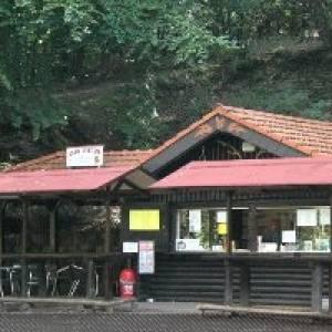 Tierbeobachtungen im Wildfreigehege (c) Wildfreigehege Karlsbrunn-Großrosseln