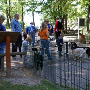 Tierpark Schönebeck auf dem Bierer Berg