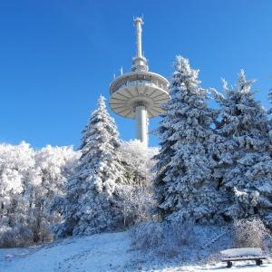 Schneezeit am Hoherodskopf/ Vogelsberg