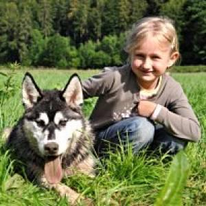 Husky-Hof auf der Schwäbischen Alb