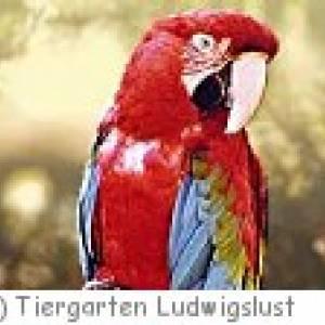 Tiergarten Ludwigslust in Osterholz-Scharmbeck