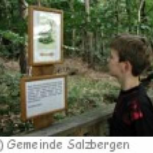 Walderlebnispfad Stoverner Wald