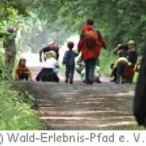 Wald-Erlebnis-Pfad Wendeburg
