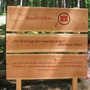 Inzell Frillensee Waldlehrpfad