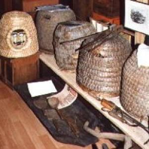 Lebendige Bienenmuseum Knüllwald