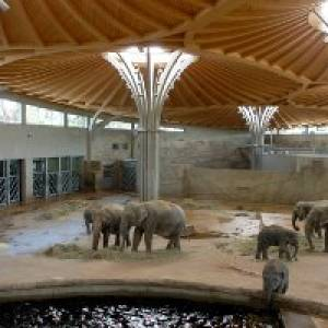 Geheimnisvolle Nachtexpedition im Zoo Köln (c) Zoo Köln