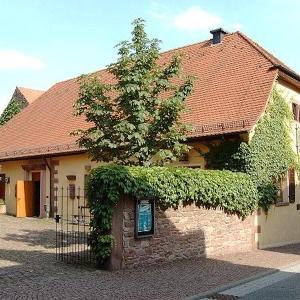Marionettenbühne Mottenkäfig Pforzheim