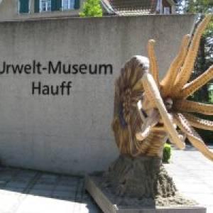Urweltmuseum Hauff Holzmaden (c) alex grom
