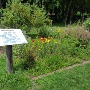 Naturerlebnis-Garten Lohrberg in Frankfurt