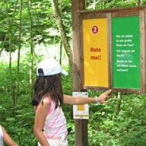 Ottobeuren Walderlebnisweg am Bannwald