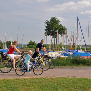 Radfahren Naturpark Dümmer