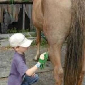 (c) HUNKAPI - Verein zur Förderung der Mensch-Tier-Beziehung e.V.