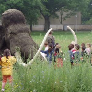 Kinder mit Mammut