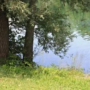 Waldlehrpfad von Schwalbach