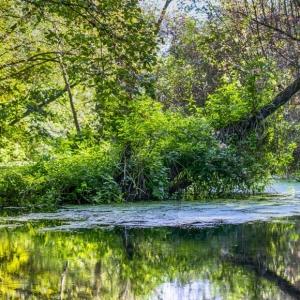 Erholen im Müritz Nationalpark