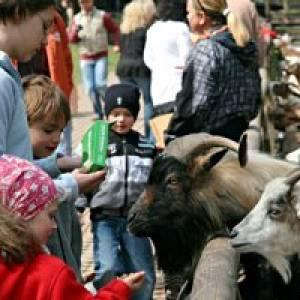 Geburtstag im Wild und  Wanderpark Südliche Weinstraße bei Silz
